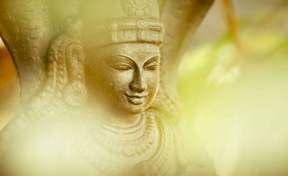 Krishnamacharya Yoga Mandiram (KYM)