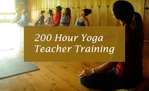 Teacher Training: 200 Hour Yoga Teacher Training; 01-May-2019